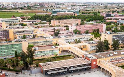 Las universidades andaluces mantendrán la modalidad presencial para sus exámenes de Navidad a pesar de la segunda ola de COVID19